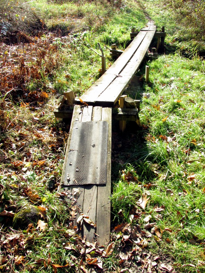 raised boardwalk with traction, Jackson Trail (TAM)