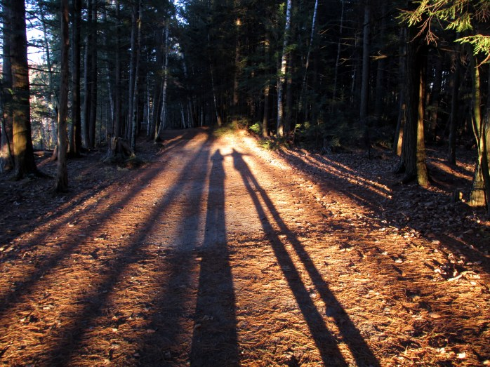 shadows, Kezar Lake, Sutton, NH, - 4 Nov
