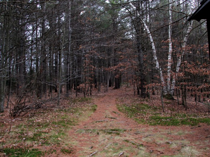 trail by pavilion