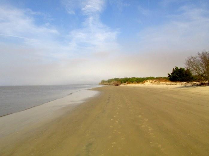 beachshorelineStAndrewsJekyll25Dec2015