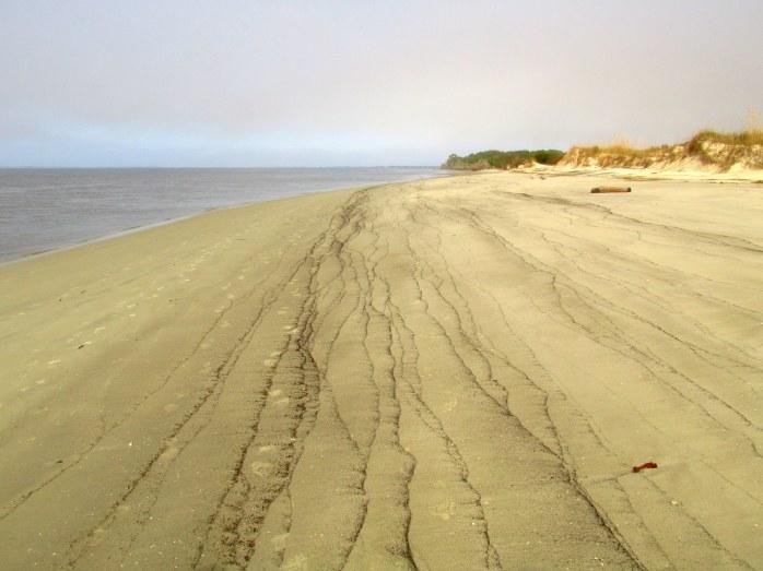 beachstriationsSouthbeachJekyll25Dec2015