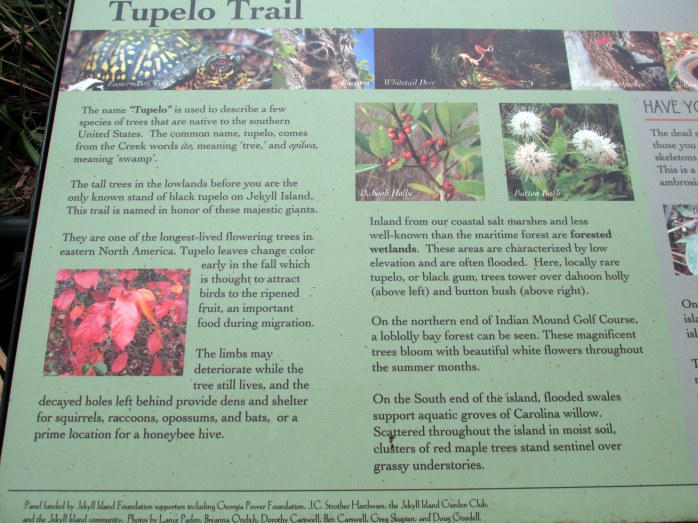 information about the trail and about other habitats on the island
