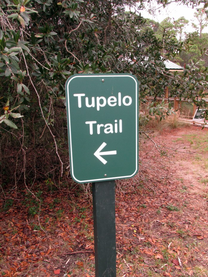 sign near the observation deck, marking the start of the trail