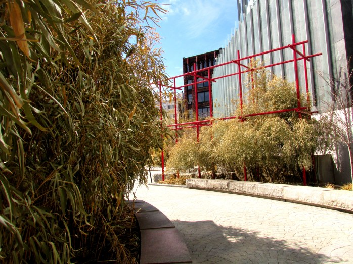 bamboo at the Essex Street Gateway on the Rose Kennedy Greenway