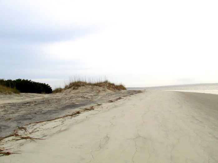 beachdunesSouthBeachcornerJekyll23Dec2015
