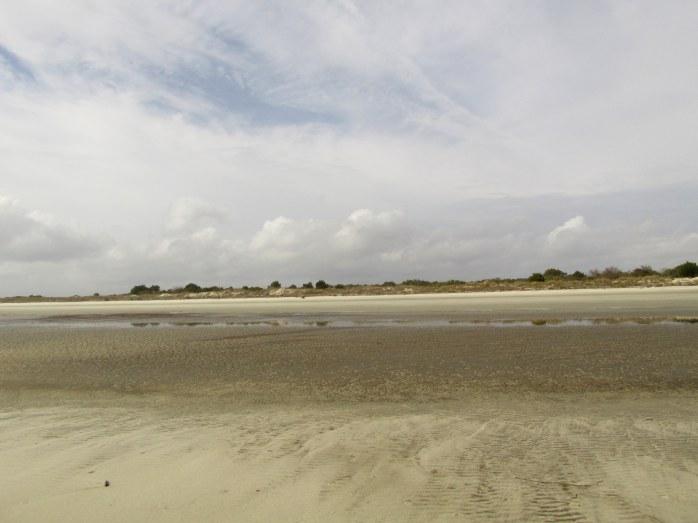 beachfacinglandsouthbeachJekyll22Dec2015