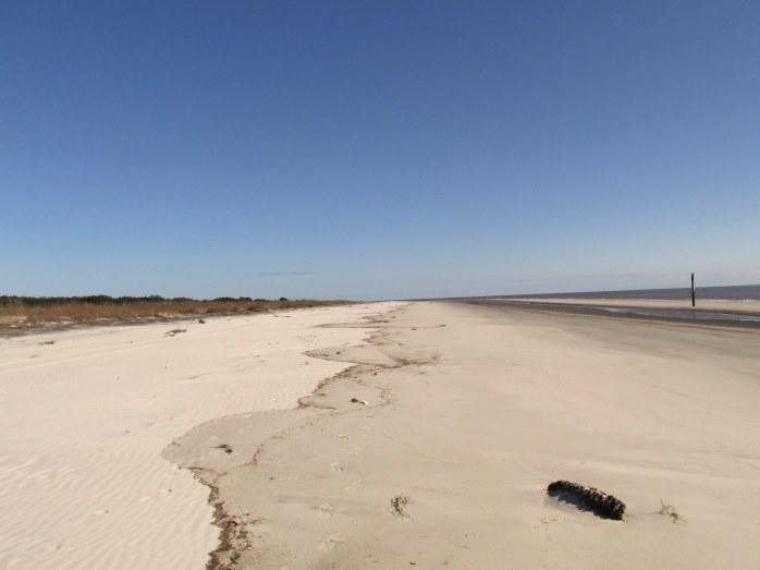 beachviewSouthBeachJekyll20Dec2015