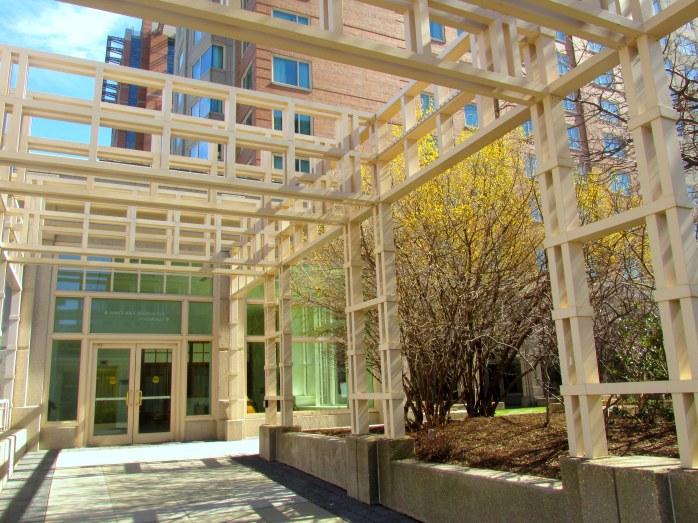 forsythia by World Trade Center (above show venue)