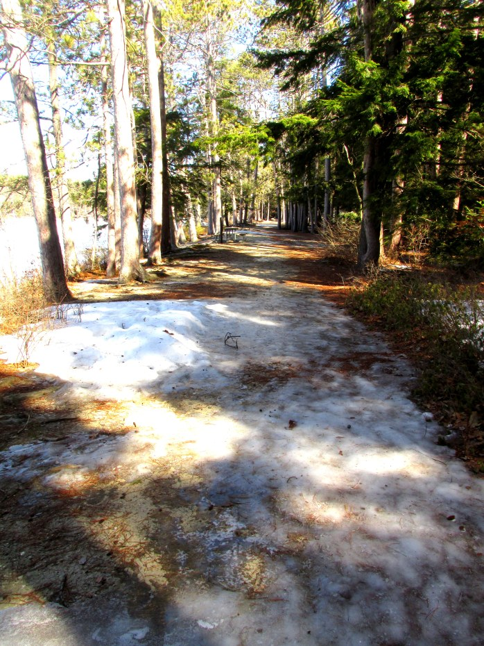 icy trail, Kezar Lake, Sutton, 27 Feb 2016