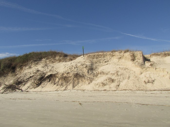 high dune at location 11
