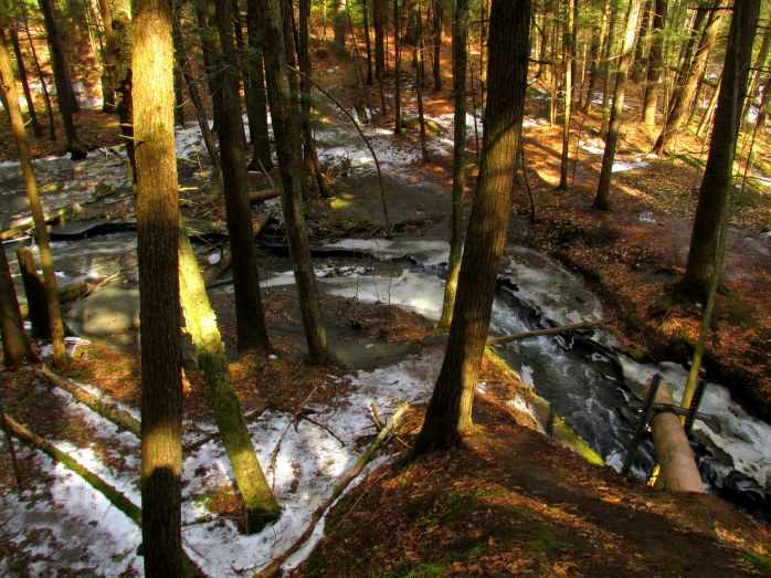 sunlight in ravine, Paradise Park, Windsor VT, 28 Feb 2016