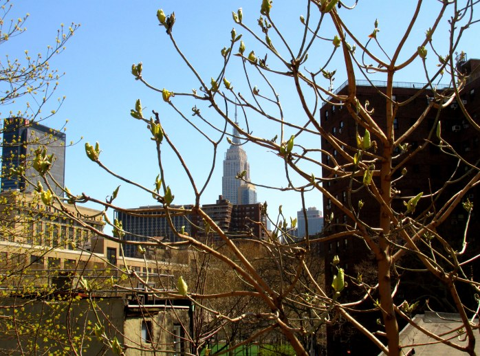 EmpireStateBuildingthroughtreebudsHighLineNYC10April2016