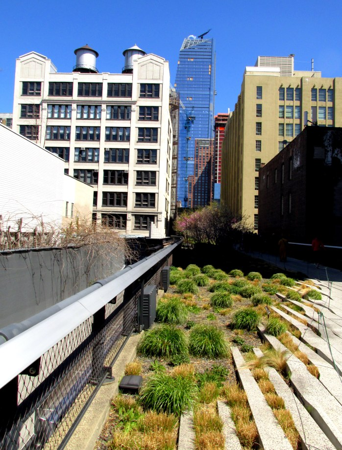 grasseswalkwayHighLineNYC10April2016