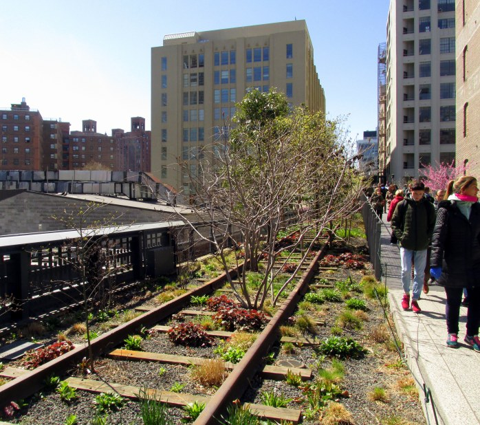 plantingsrailroadtrackspeopleHighLineNYC10April2016