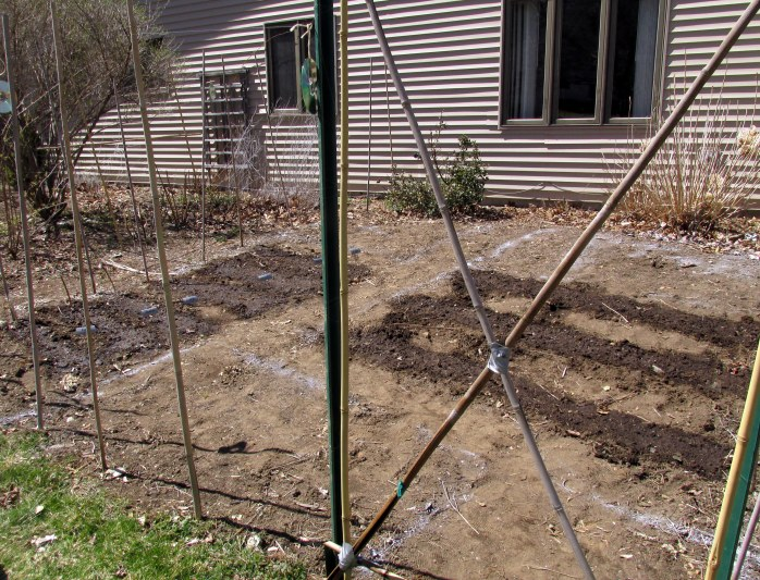 vegetable garden with some seeds planted
