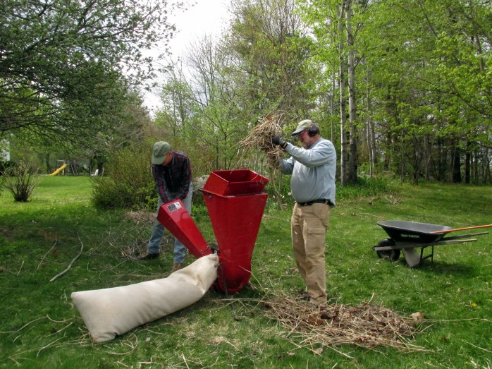 chipper shredding grasses for mulch, 17 May