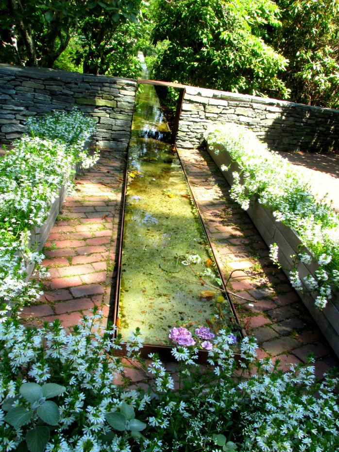 a waterway with flowers