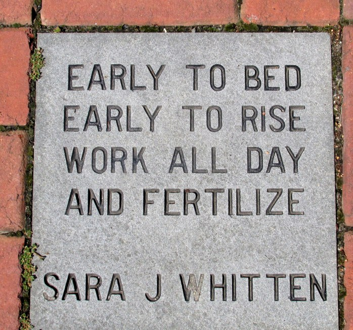 EarlytoBedFertilizequotebrickGinterRichmond17July2016