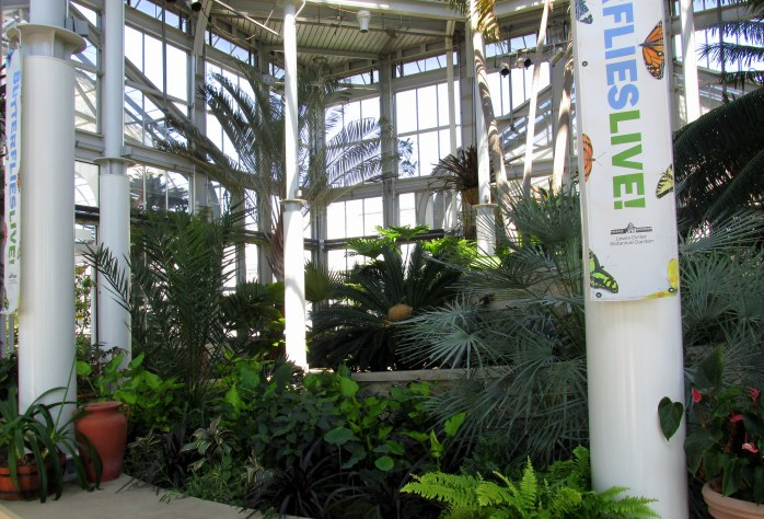 inside conservatory, (Butter)flies Alive sign