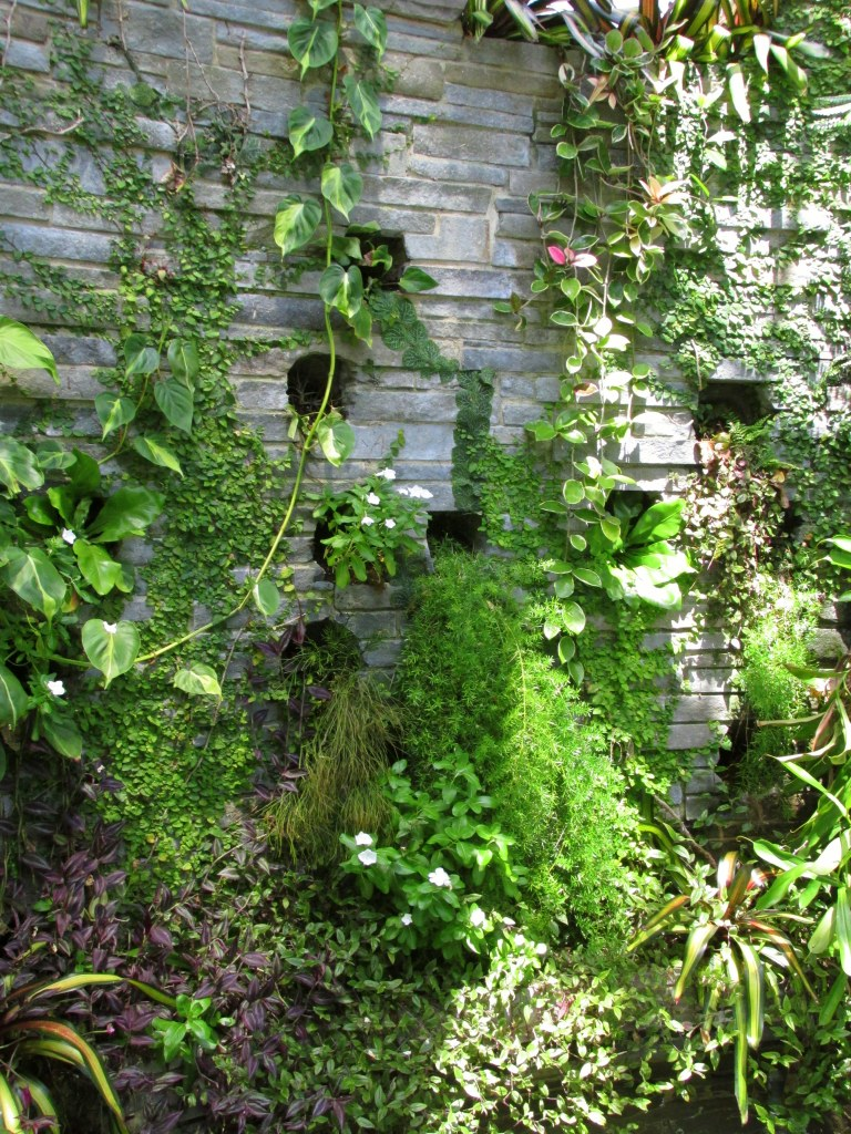 orchid house wall