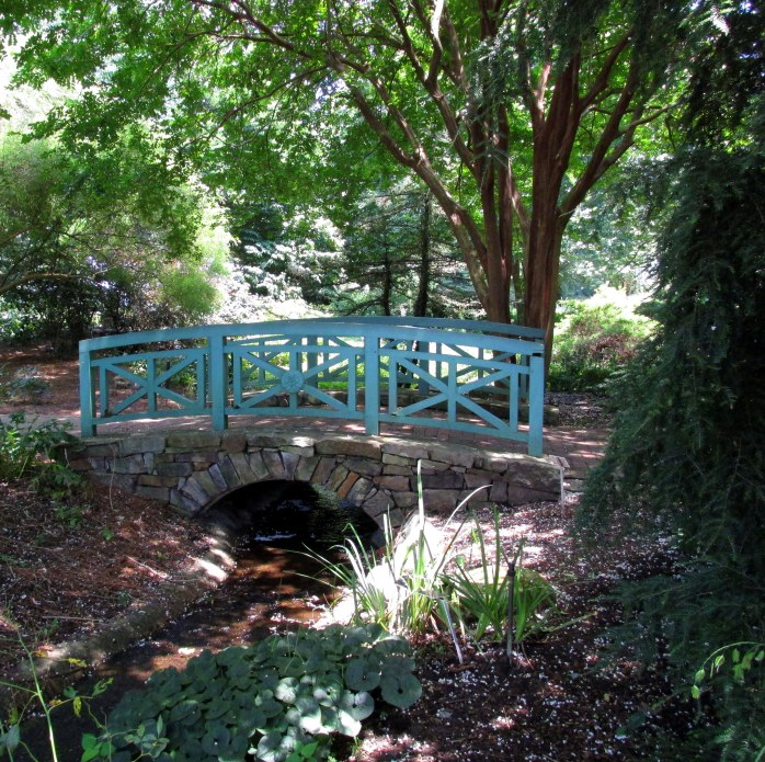 woodland bridge