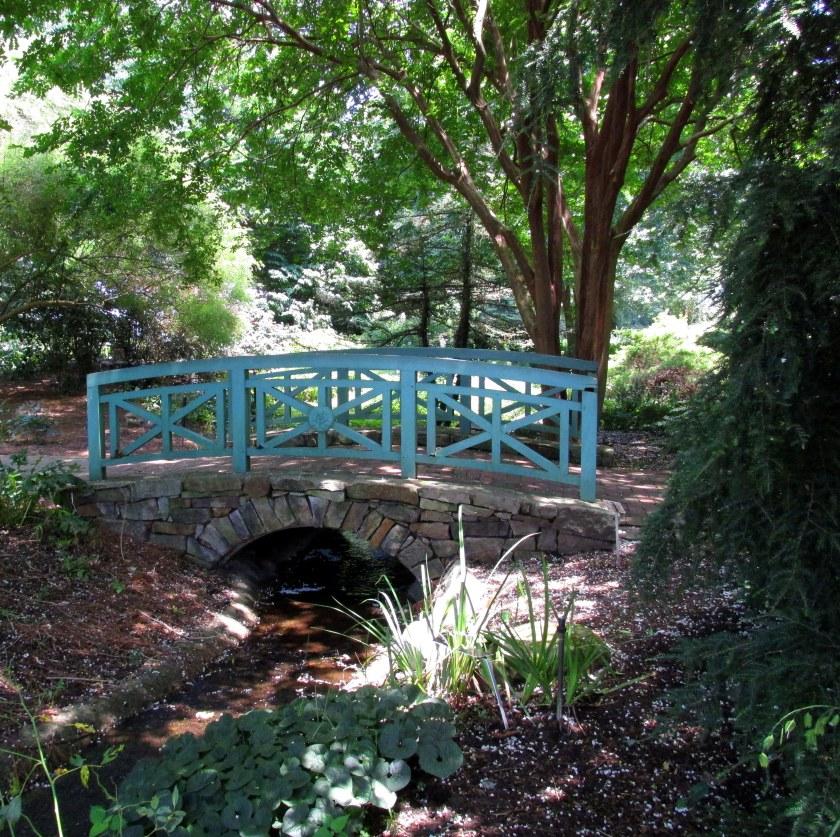woodland bridge