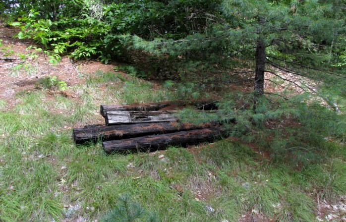 old railroad ties, a common sight along the trail
