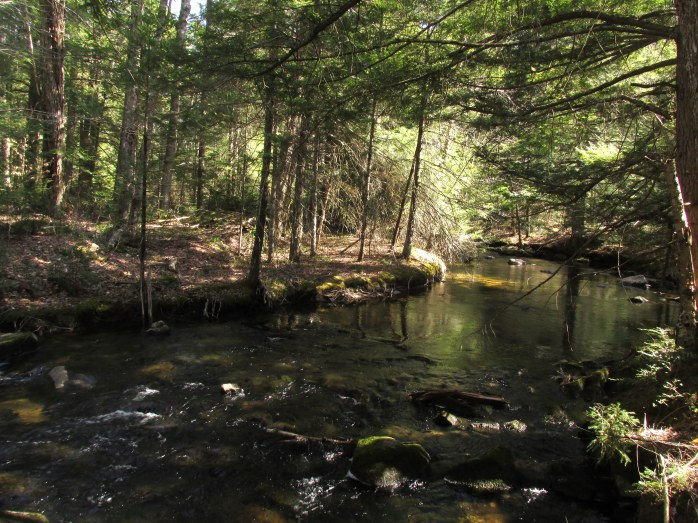 Bicknell Brook, Enfield, NH, April 2016