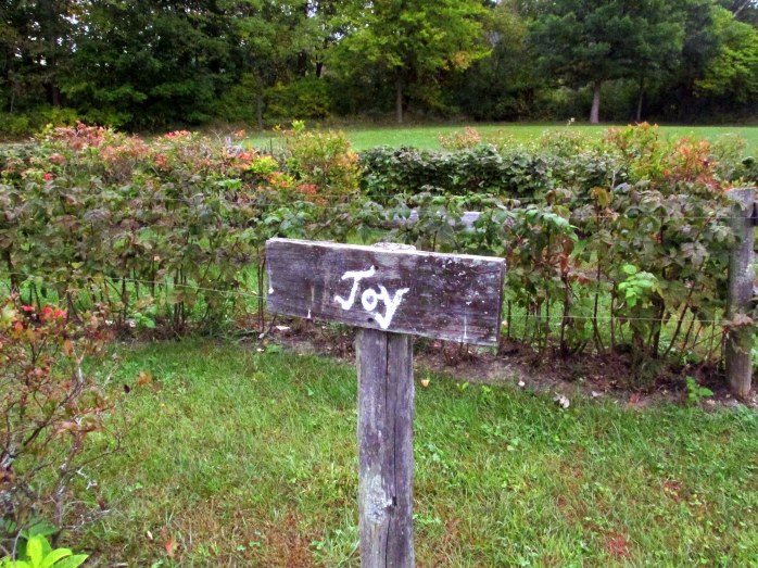 joysignraspberryhedgepathoflifewindsorvt7oct2016
