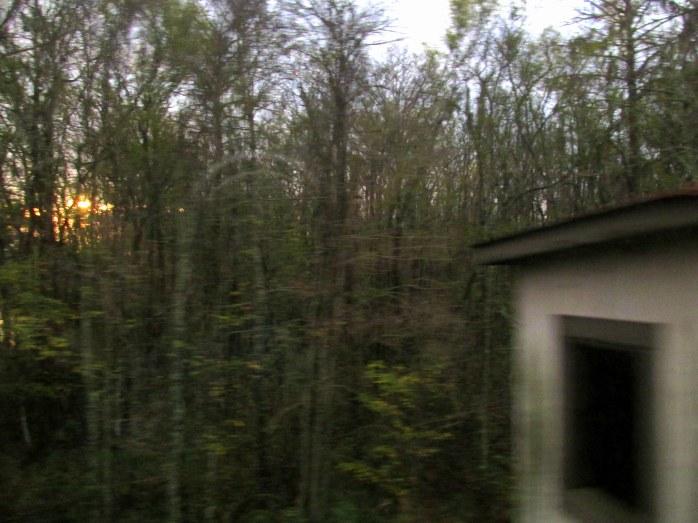 from train near Savannah, GA, Dec. 2015