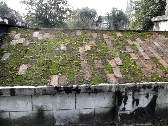 moss on crypt roof, Colonial Park Cemetery, Savannah, Dec. 2015