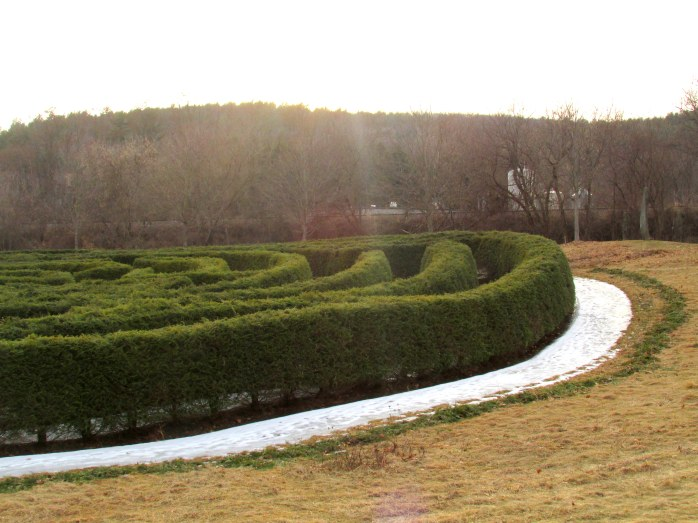 detail: partial maze with ice