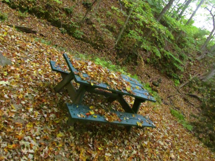 picnictablefallleavesrespitepathoflifewindsorvt7oct2016