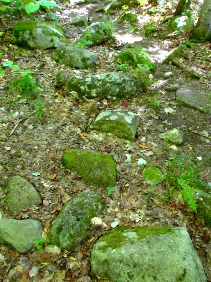rocky mossy trail