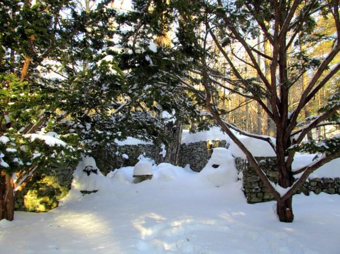 stonepatiotreesoldgardenfells22feb2015