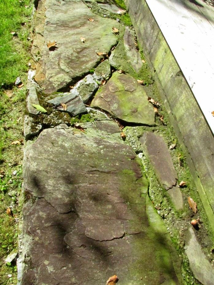 broken stone step with moss - Cider Hill Garden, VT, Oct. 2016