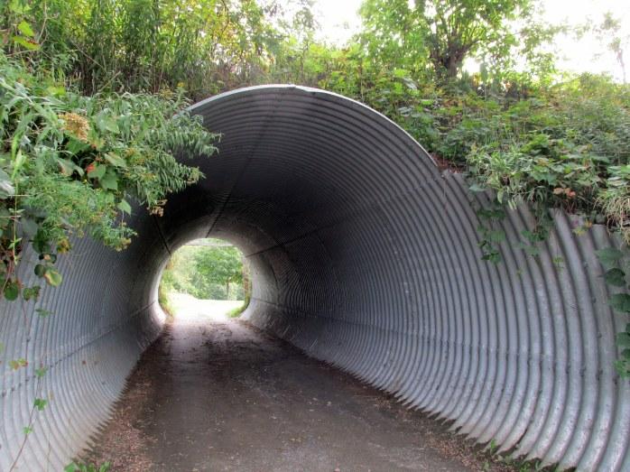 tunnelofoblivionpathoflifegardenwindsorvt20sept2015