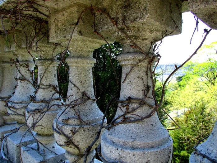 vines around balusters, Wave Hill, NY, May 2015