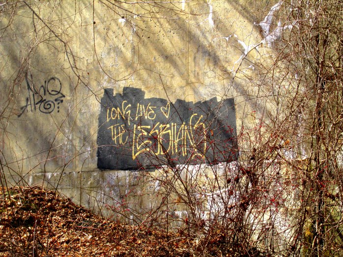 longlivethelesbiansgraffitoconcretevinesodiornepointsp13march2016