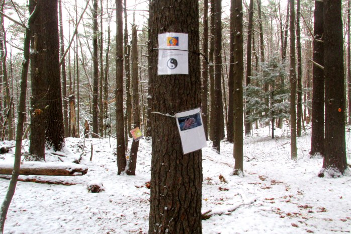 poems attached to trees in the Means Memorial Woods Loop ... we read most of the 10 or so