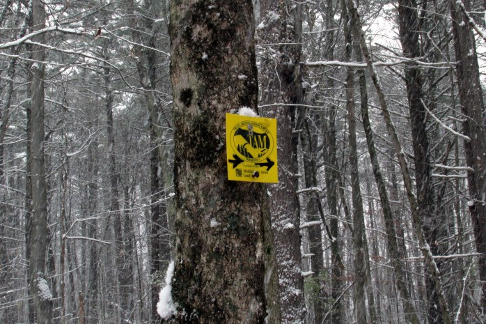 The TAM trail signs, often with arrows drawn on them
