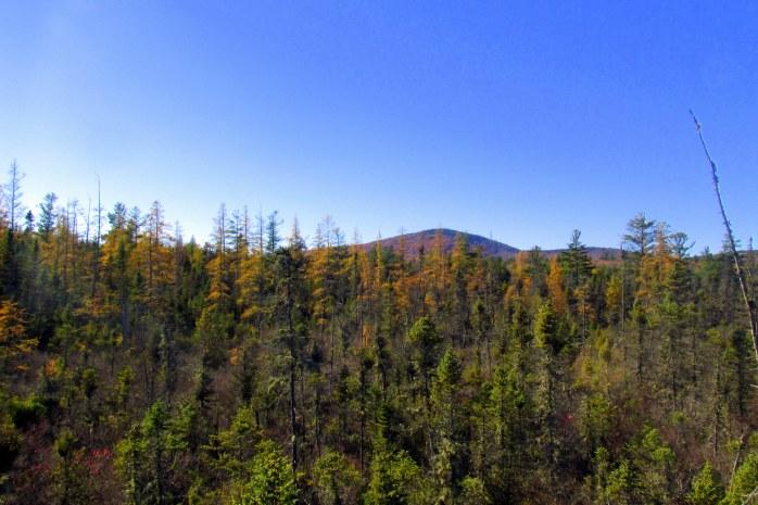 view in October