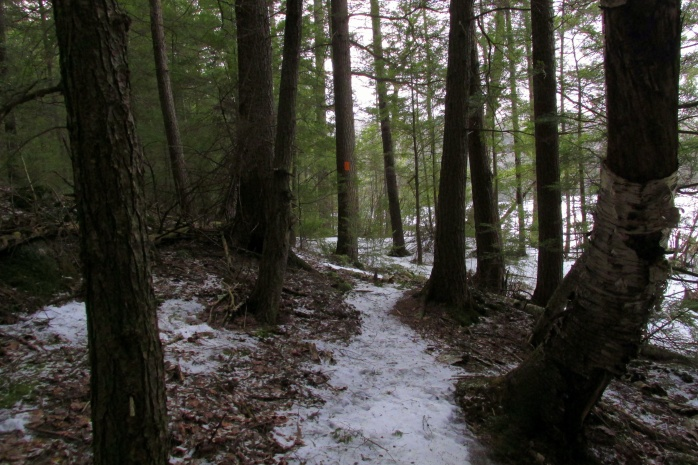 icytrailtreesButterfieldPondWilmot11March2017