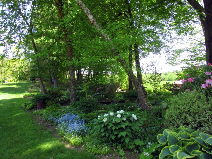 SwalewayshadegardensBedrockGardensNH20May2017