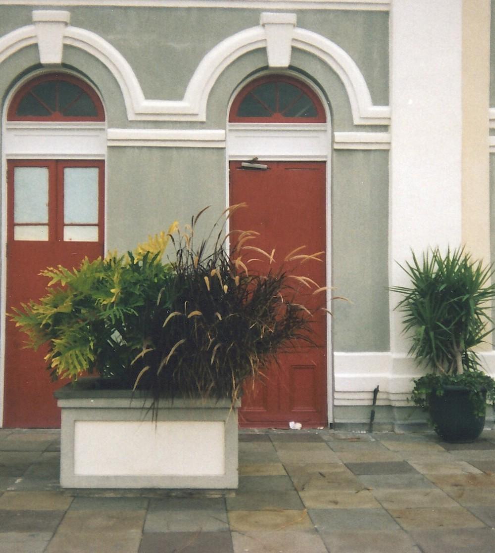 neworleansdoorsslice112006