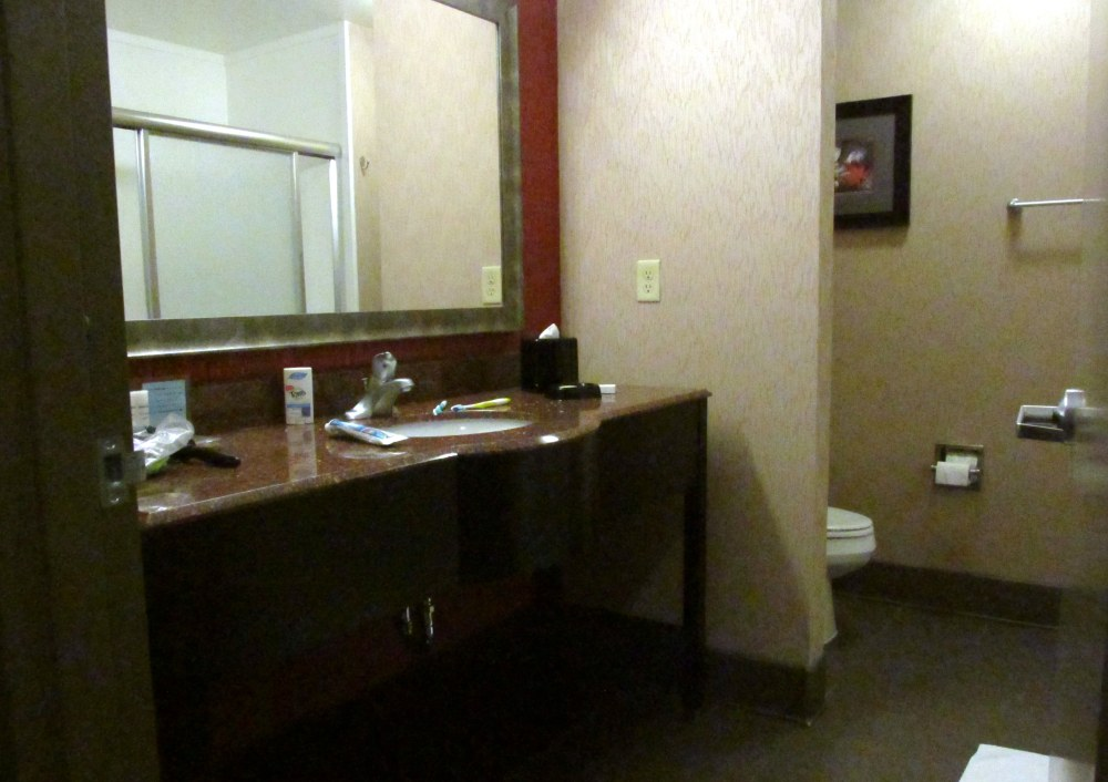 bathroomHamptonInnSuitesRichmond16July2016
