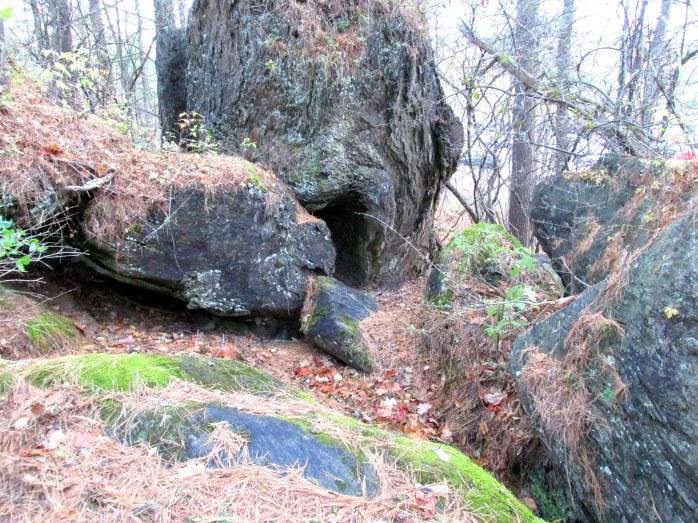 caverockspineneedlesMurdockPreserveTAMMiddleburyVT1Nov2015