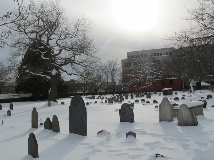 cemeteryandtreesSalemMA8Feb2014