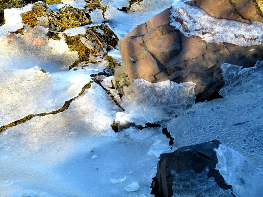 icerocksseaweedStAnthonyFranciscanMonasteryKennebunk31Dec2014