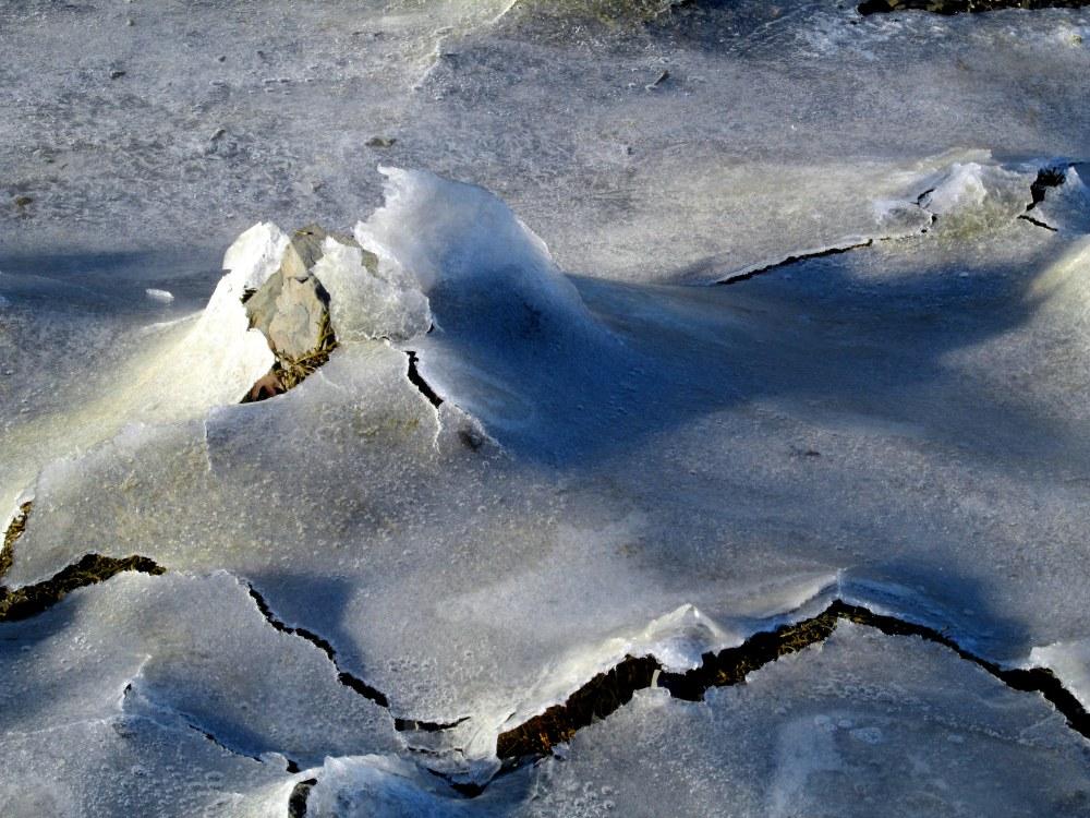 icesplitongrassescloseStAnthonyFranciscanMonasteryKennebunk31Dec2014